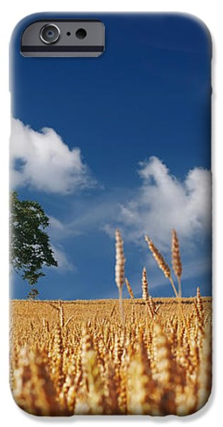 Fields of Grain iPhone Case by Mountain Dreams