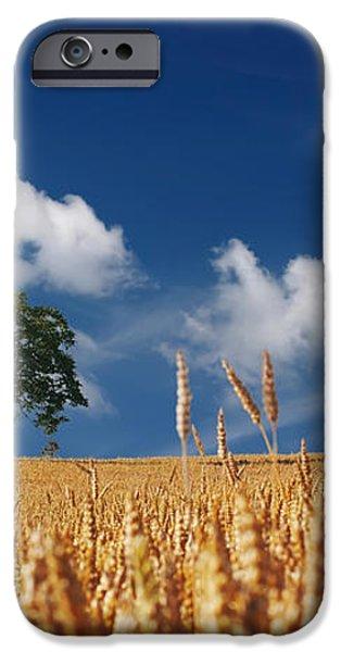 Fields of Grain iPhone Case by Mountain Dreams