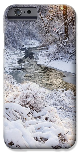 Sunflare iPhone Cases - Forest creek after winter storm iPhone Case by Elena Elisseeva