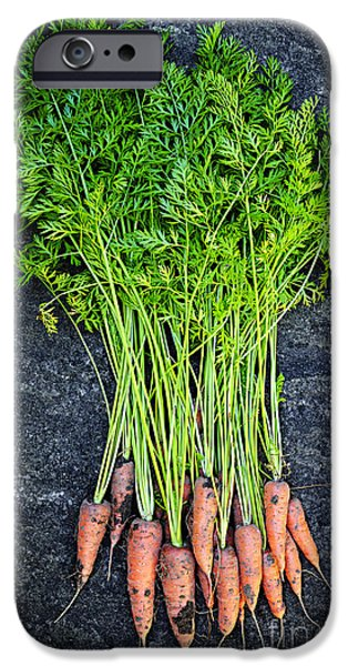 Fresh Produce iPhone Cases - Fresh carrots from garden iPhone Case by Elena Elisseeva