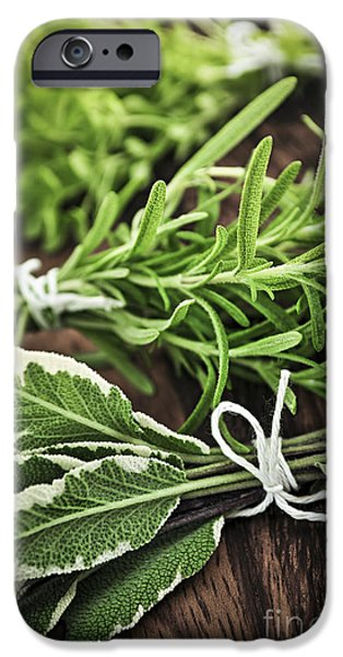 Thread iPhone Cases - Fresh herbs iPhone Case by Elena Elisseeva