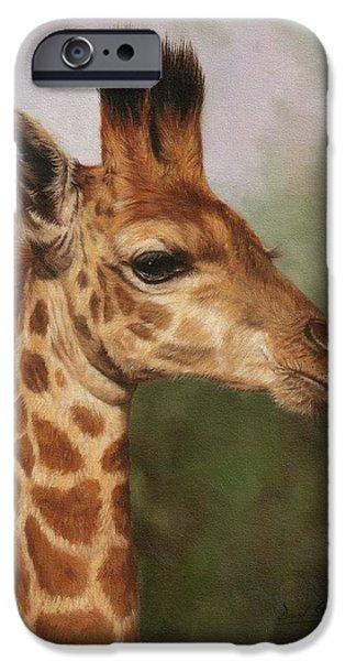 Giraffe iPhone Cases - Giraffe iPhone Case by David Stribbling