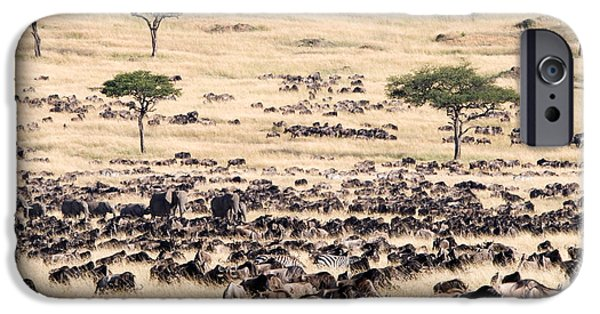 Fauna iPhone Cases - Great Migration Of Wildebeests, Masai iPhone Case by Panoramic Images