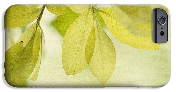 Foliage iPhone Cases - Green Foliage Series iPhone Case by Priska Wettstein