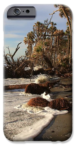Hunting Island iPhone Case by Michael Weeks