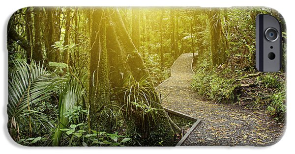 Pathway iPhone Cases - Jungle light iPhone Case by Les Cunliffe