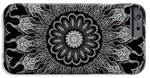 Haeckel iPhone Cases - Kaleidoscope Ernst Haeckl Sea Life Series Black and White Set On iPhone Case by Amy Cicconi