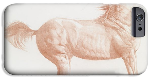 Horse Pastels iPhone Cases - Kicking Off iPhone Case by Emma Kennaway