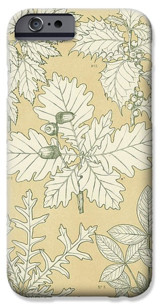 Ornament iPhone Cases - Leaves from Nature iPhone Case by English School