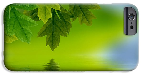 Element Photographs iPhone Cases - Leaves reflecting in water iPhone Case by Aged Pixel