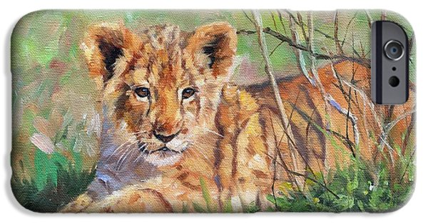 Lion Print iPhone Cases - Lion Cub iPhone Case by David Stribbling