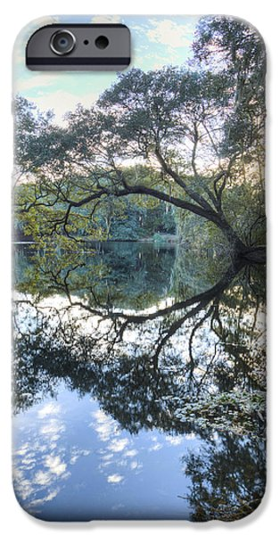 Live Oaks iPhone Cases - Live Oak Reflections iPhone Case by Dustin K Ryan