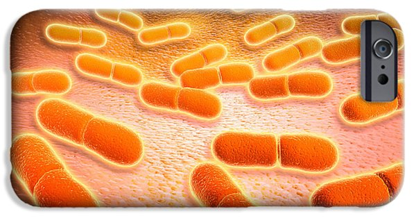 Prokaryote iPhone Cases - Microscopic View Of Listeria iPhone Case by Stocktrek Images