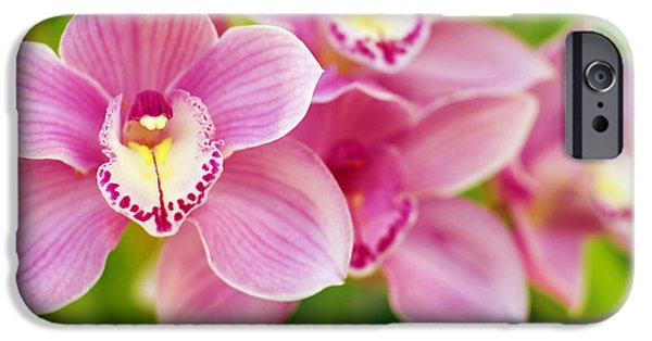 Close Up Floral iPhone Cases - Orchids iPhone Case by Carlos Caetano