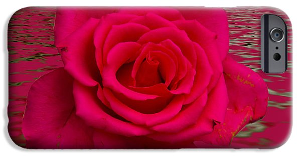 Mount Rose iPhone Cases - Pink Lily Floral art iPhone Case by David French