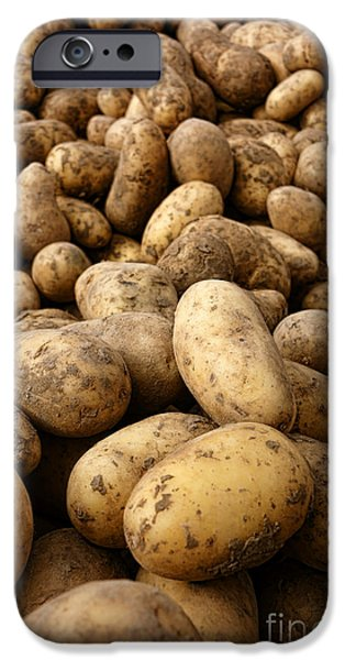 Local Food iPhone Cases - Potatoes iPhone Case by Olivier Le Queinec