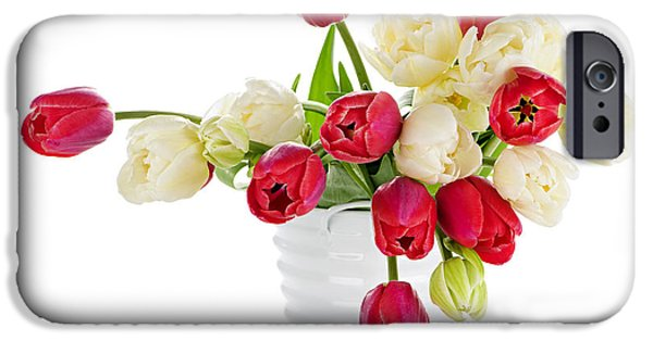 Pail iPhone Cases - Red and white tulips iPhone Case by Elena Elisseeva
