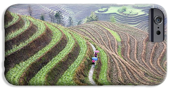 Farm iPhone Cases - Rice terraces iPhone Case by King Wu