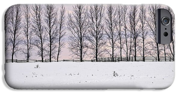 Snowy Evening iPhone Cases - Rural winter landscape iPhone Case by Elena Elisseeva