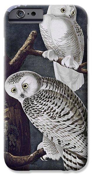 Snowy Night Mixed Media iPhone Cases - Snowy Owl iPhone Case by John James Audubon
