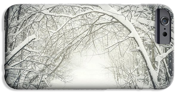 Snowy iPhone Cases - Snowy winter path in forest iPhone Case by Elena Elisseeva