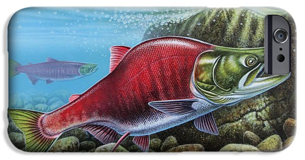 Seafood iPhone Cases - Sockeye Salmon iPhone Case by JQ Licensing