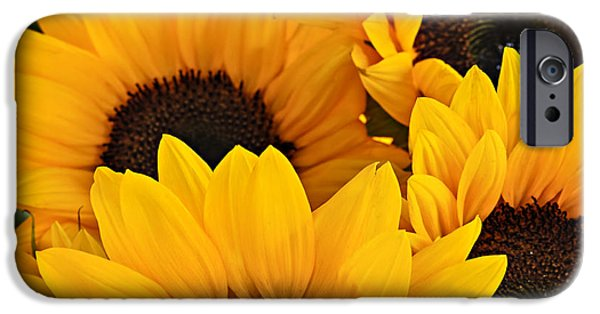 Square Format iPhone Cases - Sunflowers iPhone Case by Elena Elisseeva
