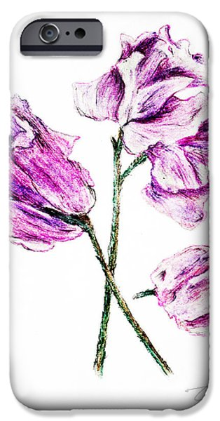 Flora Drawings iPhone Cases - Sweet pea iPhone Case by Danuta Bennett