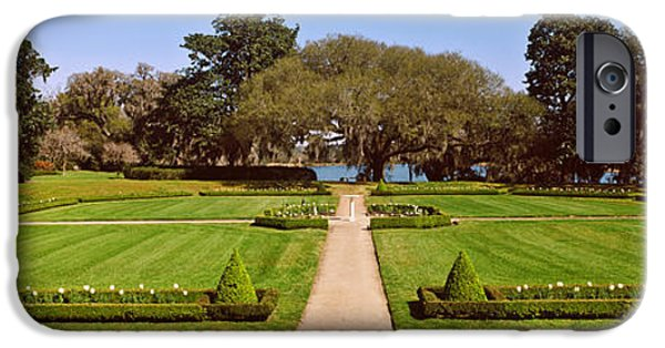 Garden Scene iPhone Cases - Trees In A Garden, Middleton Place iPhone Case by Panoramic Images