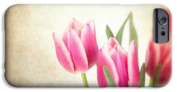 Flora Photographs iPhone Cases - Tulips vintage iPhone Case by Jane Rix