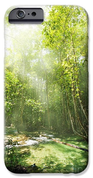Mangrove Forest iPhone Cases - Waterfall In Rainforest iPhone Case by Atiketta Sangasaeng