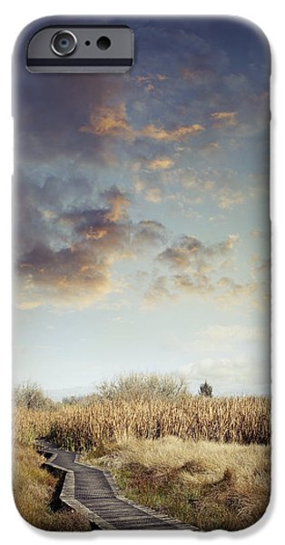 Pathway iPhone Cases - Wetland walk iPhone Case by Les Cunliffe