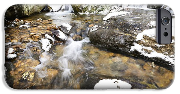 Oak Creek iPhone Cases - White Oak Run in Winter iPhone Case by Thomas R Fletcher