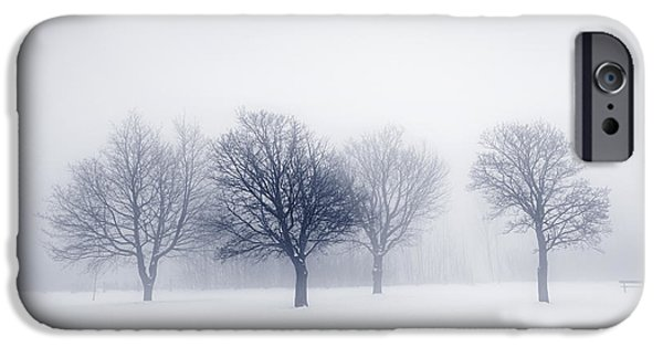 Snow Scene Landscape iPhone Cases - Winter trees in fog iPhone Case by Elena Elisseeva