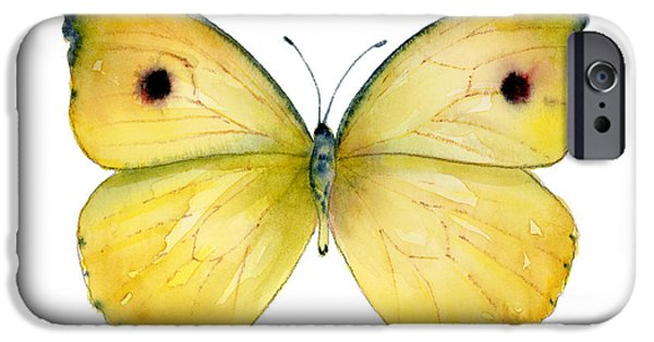 Moth iPhone Cases - 32 Dercas Lycorias Butterfly iPhone Case by Amy Kirkpatrick