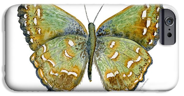 Moth iPhone Cases - 38 Hesseli Butterfly iPhone Case by Amy Kirkpatrick