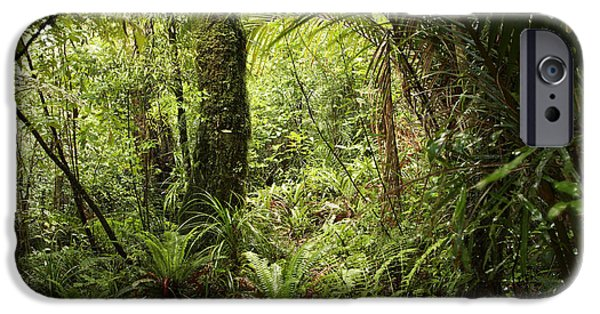 Forest iPhone Cases - Jungle iPhone Case by Les Cunliffe