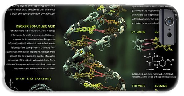 Microbiology Digital iPhone Cases - 3d Poster Illustration Of Dna iPhone Case by Nicholas Mayeux
