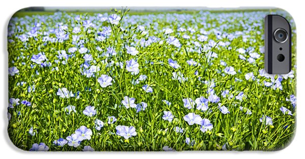 Blossom iPhone Cases - Blooming flax field iPhone Case by Elena Elisseeva