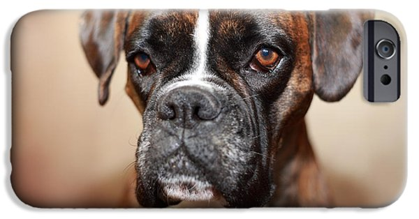 Dog Close-up Photographs iPhone Cases - Boxer dog iPhone Case by Jana Behr