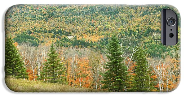 Maine Mountains iPhone Cases - Colorful Fall Forest Near Rangeley Maine iPhone Case by Keith Webber Jr
