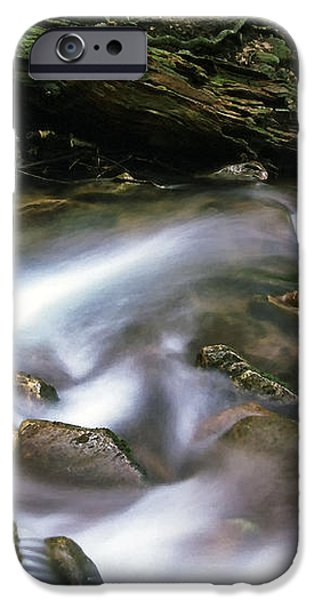 Cranberry Wilderness iPhone Case by Thomas R Fletcher