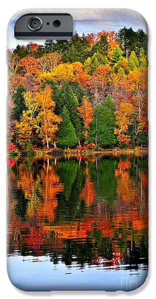 Vivid iPhone Cases - Fall forest reflections iPhone Case by Elena Elisseeva