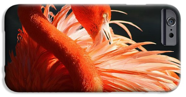 Florida Pyrography iPhone Cases - Flamingo Beauty iPhone Case by Valia Bradshaw