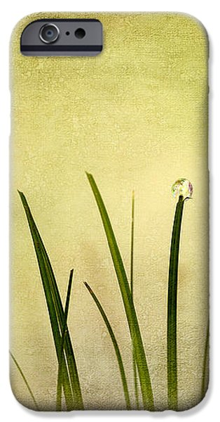 Grass iPhone Case by Svetlana Sewell