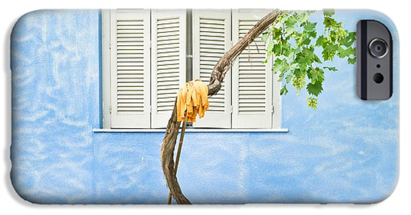 Blue Grapes iPhone Cases - Greek house iPhone Case by Tom Gowanlock