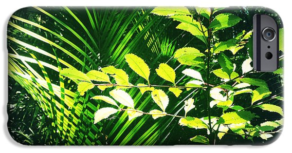 Raining iPhone Cases - Jungle leaves iPhone Case by Les Cunliffe