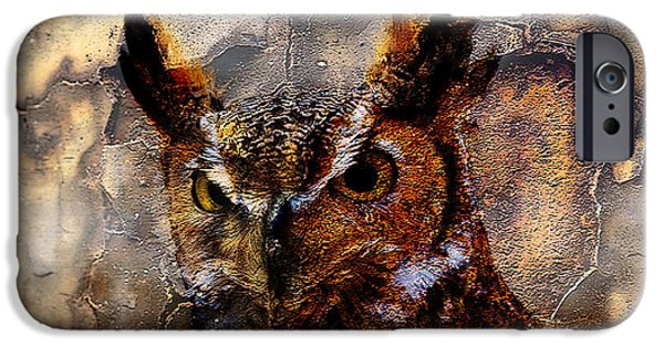 Owl iPhone Cases - Owl iPhone Case by Marvin Blaine