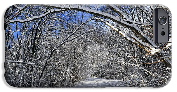 Park Scene iPhone Cases - Path in winter forest iPhone Case by Elena Elisseeva