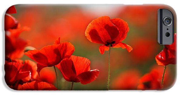 Outdoors iPhone Cases - Poppy Dream iPhone Case by Nailia Schwarz